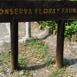 Conserve flora and fauna