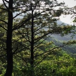 Parque Ecologico Chipinque/ Ecological Park Chipinque